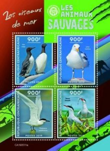 Z08 IMPERF CA190511a CENTRAL AFRICA 2019 Sea birds MNH ** Postfrisch