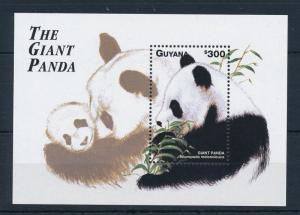 [29246] Guyana 1998 Wild Life Mammals Giant Panda MNH Sheet