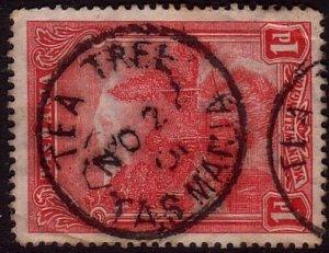 TASMANIA 1901 1d pictorial - TEA TREE cds..................................33955