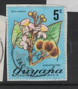 Guyana Flower Grove Town Cancel VFU (4dua)