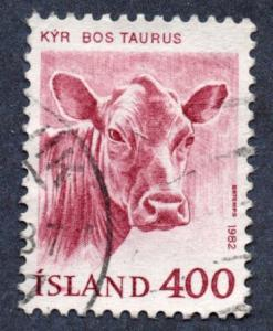 Iceland Scott #557 400a Cow (1982) Used