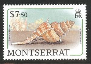 Montserrat Scott 695 MNH** sea shell 1988 stamp