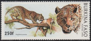 Burkina Faso 1996 MNH Sc #1082 250fr Leopard with prey