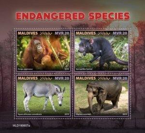 MALDIVES - 2019 - Endangered Species - Perf 4v Sheet - MNH