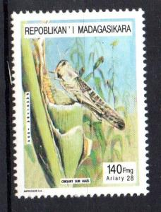 MADAGASCAR - INSECTS - CRICKET - 1995 -
