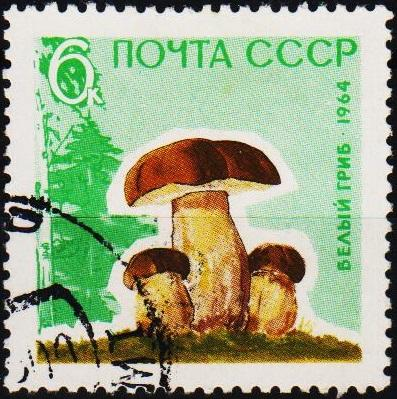 Russia.1964 6k S.G.3060 Fine Used