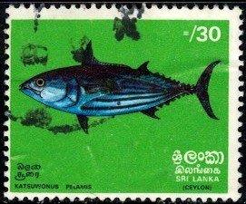 Tropical Fish, Skipjack Bonito, Sri Lanka SC#475 used