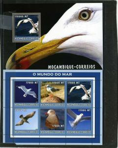 MOZAMBIQUE 2002 Sc#1661,1682 MARINE LIFE/SEA BIRDS SHEET OF 6 STAMPS & S/S MNH