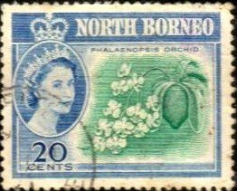 Flower, Butterfly Orchid, North Borneo stamp SC#286 used