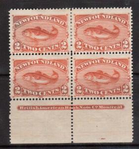 Newfoundland #48b VF Mint Plate Block