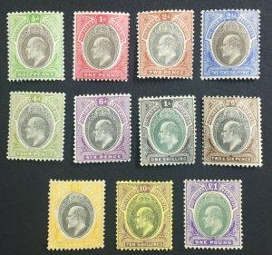 MOMEN: SOUTHERN NIGERIA SG #10-20 1903-04 MINT OG H £650 LOT #61304