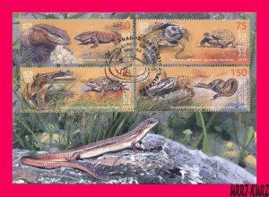 KYRGYZSTAN 2019 Fauna Reptile Amphibian Varanus Turtle Frog Snake Maxicard Card