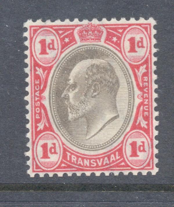 Transvaal Sc 269 1904 1d Edward VII stamp mint