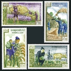 Laos 81-84, MNH. FAO Freedom from Hunger campaign. Rice harvest, 1963