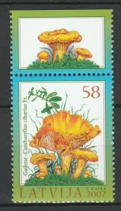 Latvia 2007 Mushrooms MNH stamp