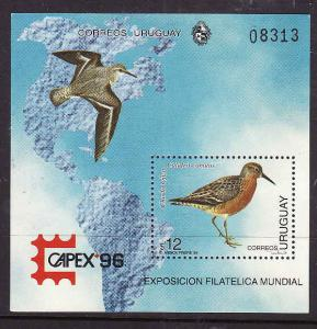 Uruguay-Sc#1615-unused NH sheet-Birds-Maps-Capex 1996-