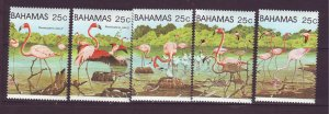 J24187 JLstamps 1982 bahamas set mnh scn #509a-e flamingoes birds