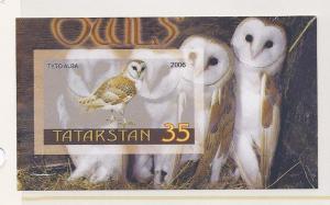TATARSTAN SHEET IMPERF OWLS BIRDS