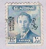 Iraq Man 10 (AP102015)    variety world stamps