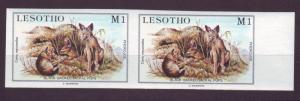 Z326 JLstamps 1984 lesotho mnh imperf pair #463 jackals