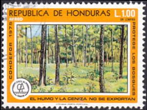 Honduras # C598 used ~ 1 l Young Forest