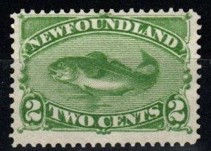 Newfoundland #46 Unused CV $70.00 (X917)