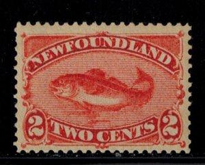 Newfoundland 48  Mint Light Hinge  very fresh copy Superb