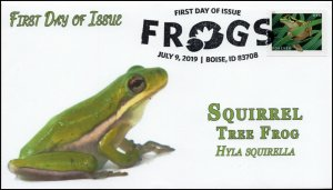 19-180, 2019, Frogs, Pictorial Postmark, First Day Cover, Squirrel Tree Frog