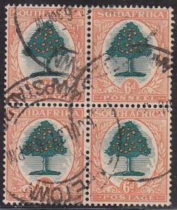 South Africa 25 Orange Tree 1926