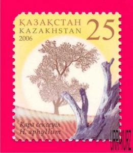 KAZAKHSTAN 2006 Nature Flora Plants Tree Saxaul 1v Sc510 Mi534 MNH