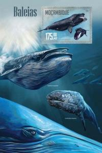 Mozambique MNH S/S Whales 2016