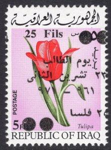 IRAQ SCOTT 622
