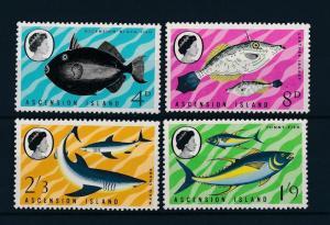 [47149] Ascension 1968 Marine life Fish Shark MNH