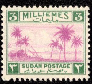 Sudan Scott 65 Unused hinged.
