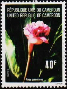 Cameroun. 1976 40f. S.G.766 Fine Used