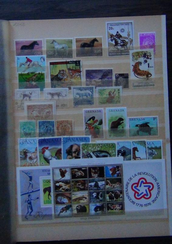 Range with Horses Tigers Wild Animals Liberia Olympics M/s Central Africa Rep