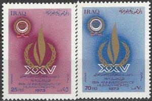 Iraq  708-9  MNH  UN Human Rights  25th Anniversary