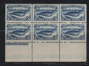Newfoundland #55 VF/NH Block Of Six  **With Cert.**
