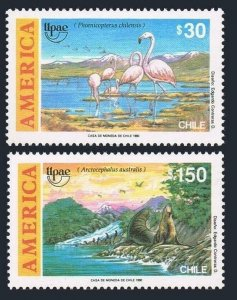 Chile 927-928,MNH. UPAEP 1990.Discovery of America- 500.Fauna:Phoenicopterus,
