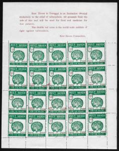 Burma 1957 Peacock | Tuberculosis TB Seal #4 Fine Cinderella SHEET Unused