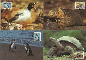 1992 ECUADOR  -  GALAPAGOS WILDLIFE - WORLD WILDLIFE FUND 4 x MAXI CARDS