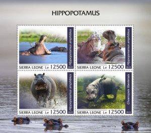 SIERRA LEONE - 2019 - Hippopotamus - Perf 4v Sheet - MNH
