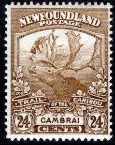 117, NSSC, Newfoundland, 24c bistre, MLHOG, F, Cambrai, Trail of the Caribou