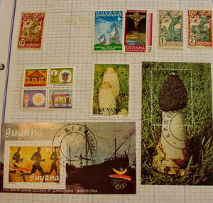 Guyana Collection--MH to Used condition