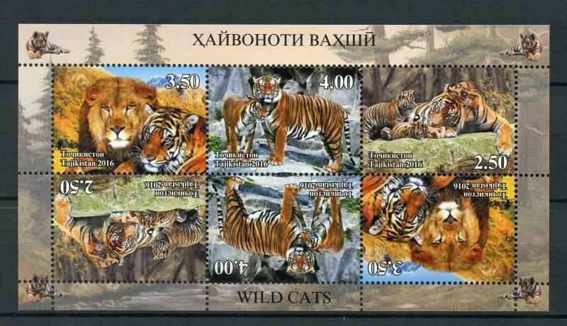 Tajikistan 2016 MNH Wild Cats Big Cats Tigers Lions 6v M/S Wild Animals Stamps