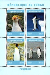 Chad 2019 Penguins Birds 4v Mint Souvenir Sheet S/S. (#15)