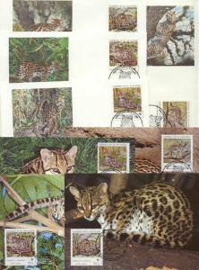 Salvador 8 FDC/cards WWF/Wild cats 1988