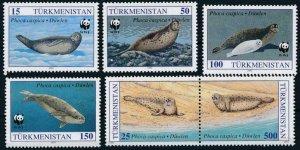Turkmenistan MNH 34-8 Caspian Seals Marine Life WWF 1993