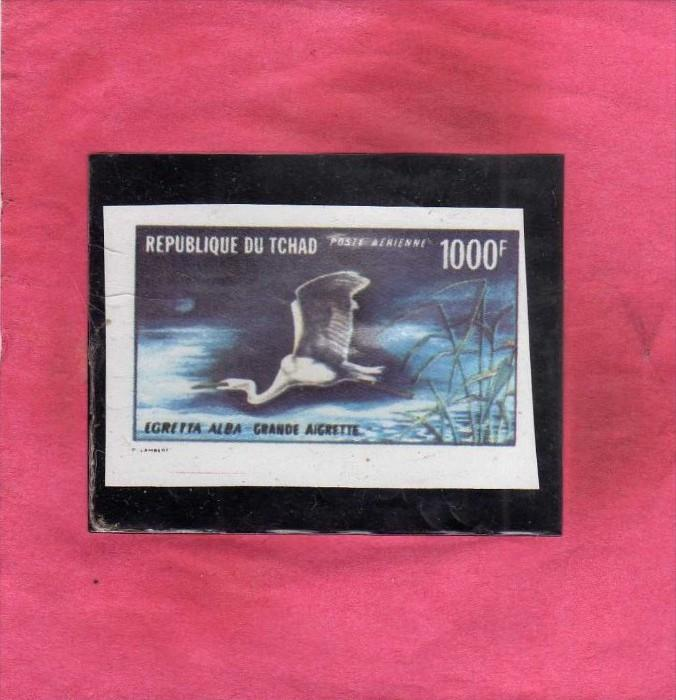TCHAD CIAD CHAD 1971 FAUNA ANIMALS ANIMALI BIRDS UCCELLI WATER BIRD WHITE EGR...