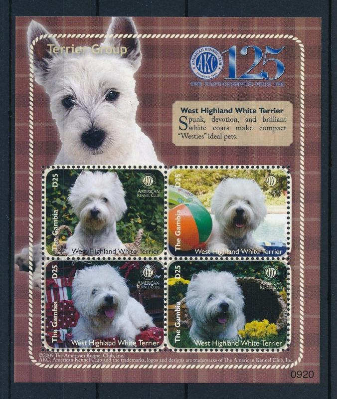 [31658] Gambia 2009 Animals Dogs 125 Year American Kennel Club MNH  Sheet